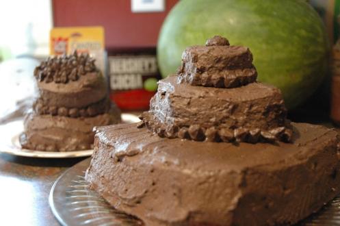 Double-Chocolate cakes