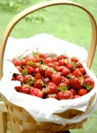 basket of berries